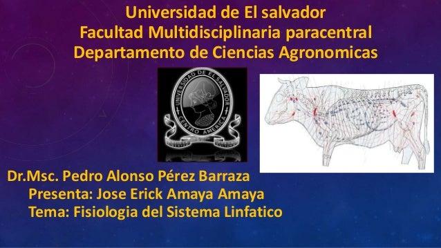 Universidad de El salvadorFacultad Multidisciplinaria paracentralDepartamento de Ciencias AgronomicasDr.Msc. Pedro Alonso ...