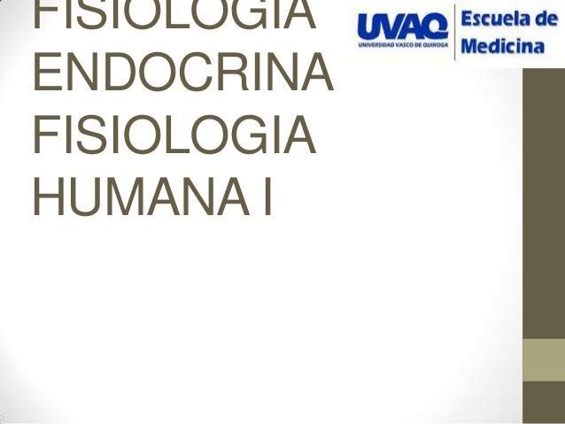 Fisiologia endocrina p