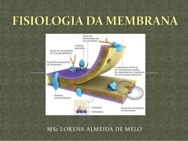 MSc LORENA ALMEIDA DE MELO