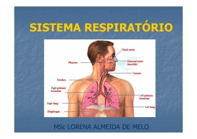 SISTEMA RESPIRATÓRIO  MSc LORENA ALMEIDA DE MELO