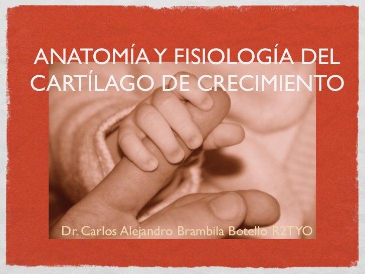 ANATOMÍA Y FISIOLOGÍA DELCARTÍLAGO DE CRECIMIENTO  Dr. Carlos Alejandro Brambila Botello R2TYO