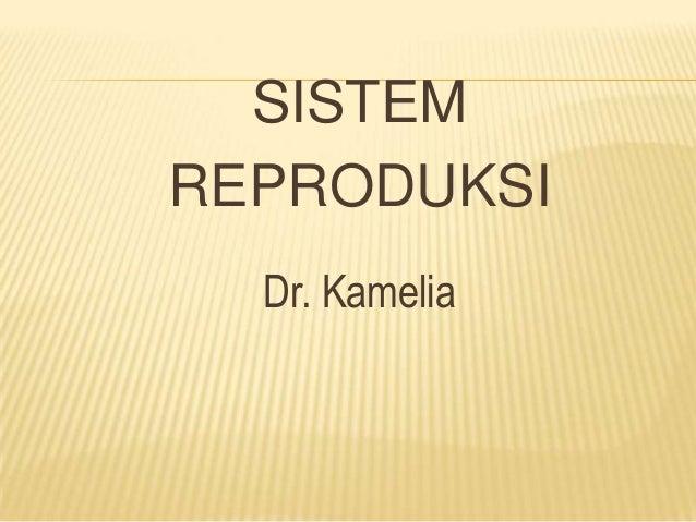 SISTEM REPRODUKSI Dr. Kamelia