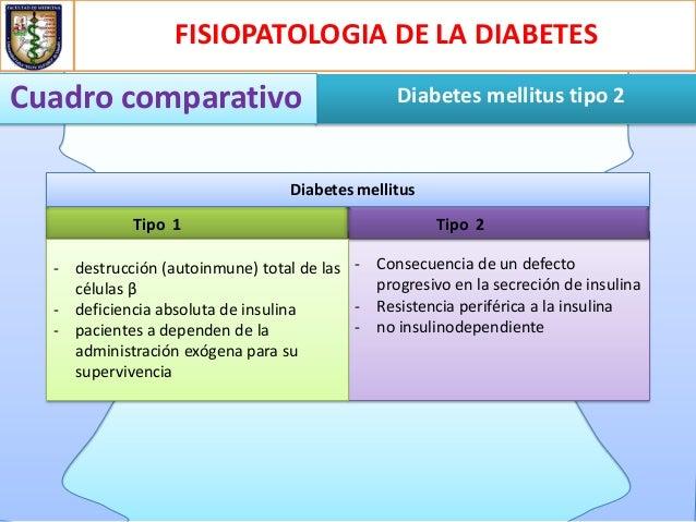 Diabetes Mellitus: Recomendaciones De La Diabetes Mellitus