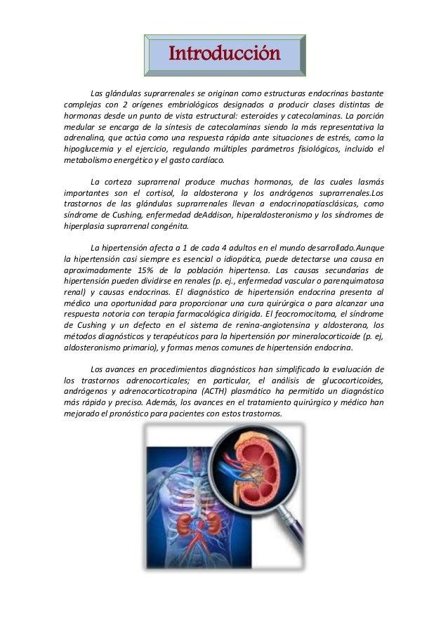 Introducción Las glándulas suprarrenales se originan como estructuras endocrinas bastante complejas con 2 orígenes embriol...