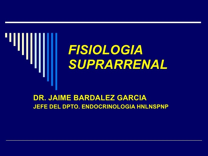 FISIOLOGIA SUPRARRENAL DR. JAIME BARDALEZ GARCIA JEFE DEL DPTO. ENDOCRINOLOGIA HNLNSPNP