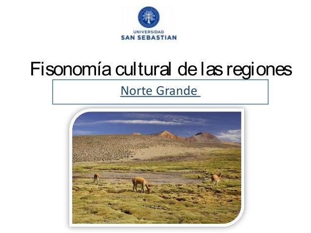 Fisonomía cultural de las regiones Norte Grande