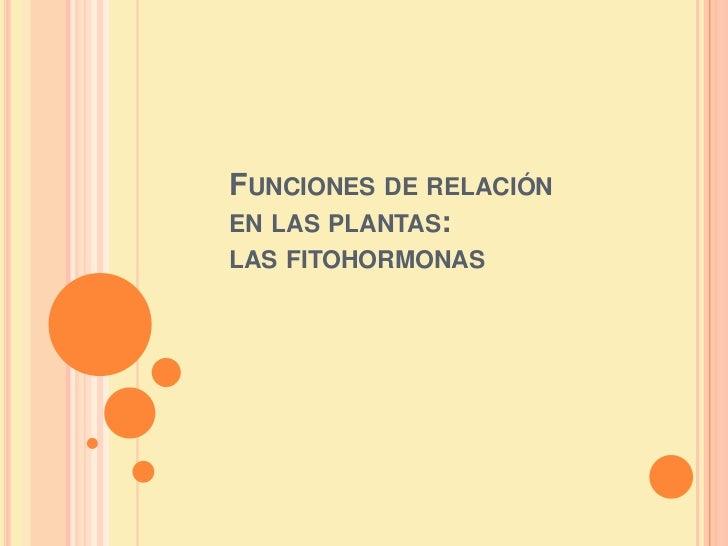 FUNCIONES DE RELACIÓNEN LAS PLANTAS:LAS FITOHORMONAS