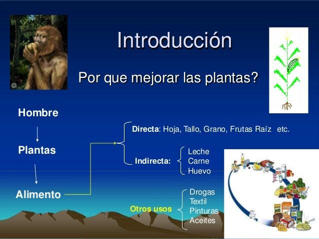 Introducción           Por que mejorar las plantas?Hombre                   Directa: Hoja, Tallo, Grano, Frutas Raíz etc.P...