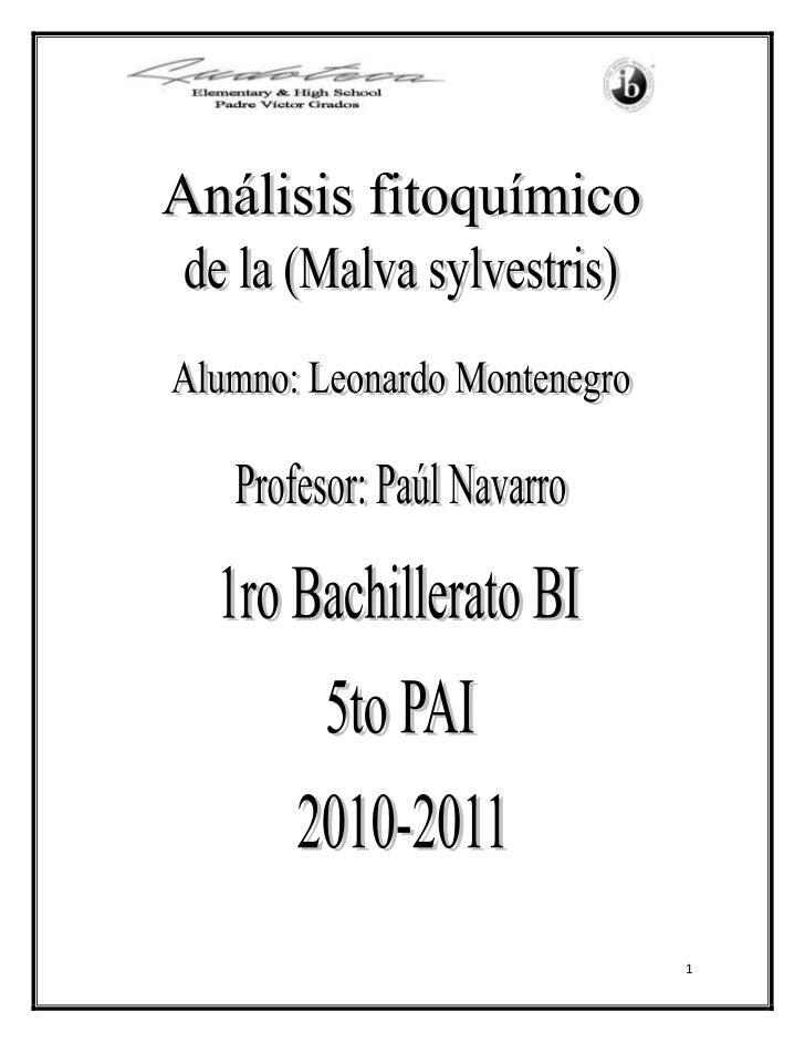 Introducción<br />La fitoquímica es una rama de la química que estudia los metabolitos secundarios extraídos de las planta...
