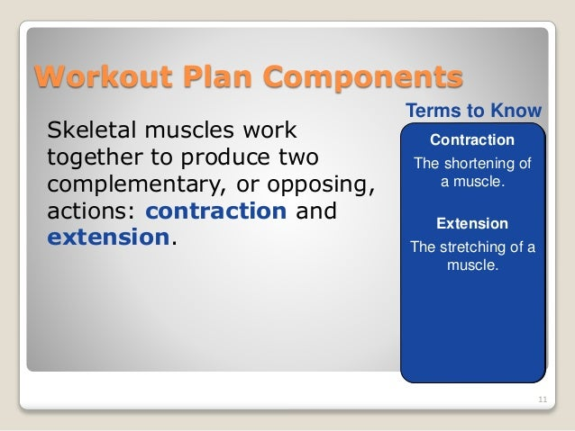 The F.I.T.T. Principle Is Designed to Produce an Effective Workout