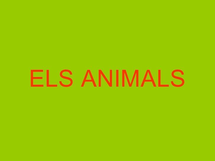 <ul><li>ELS ANIMALS </li></ul>