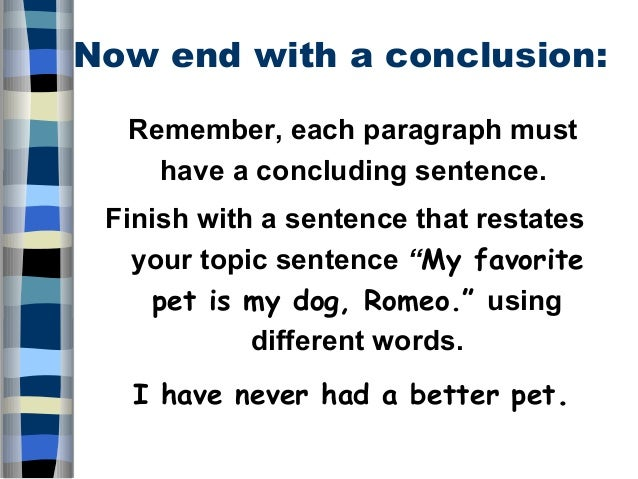 My Pet essays