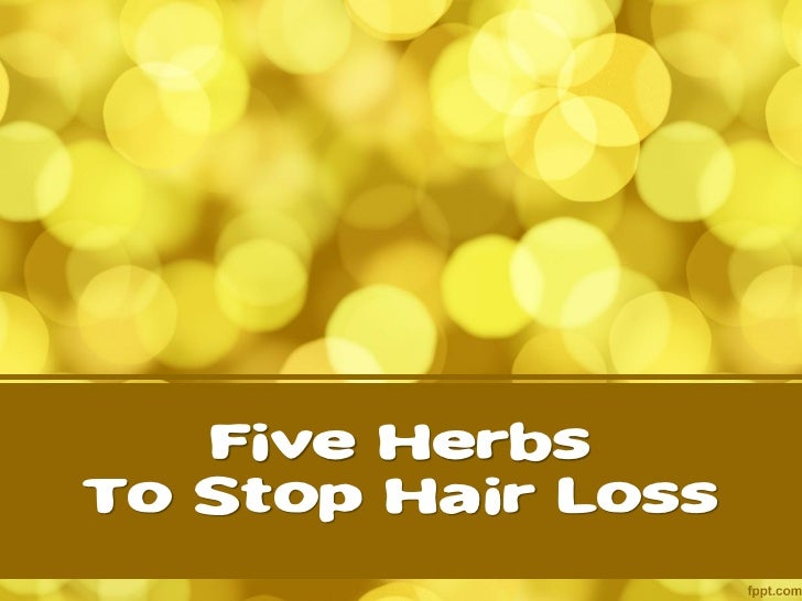 Five HerbsTo Stop Hair Loss