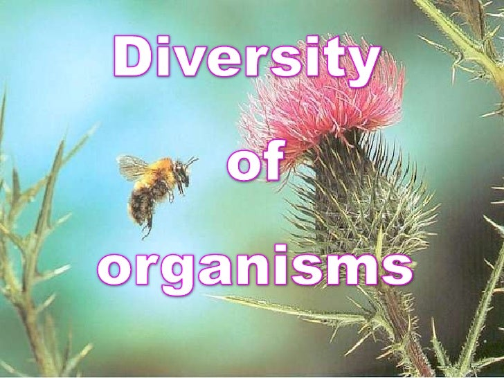 Diversity<br /> of<br /> organisms<br />