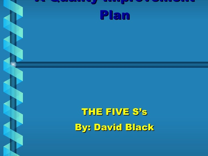 A Quality Improvement Plan THE FIVE S's By: David Black