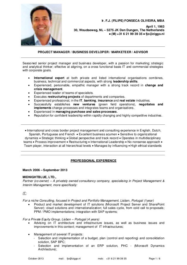 erp consultant cv template image collections