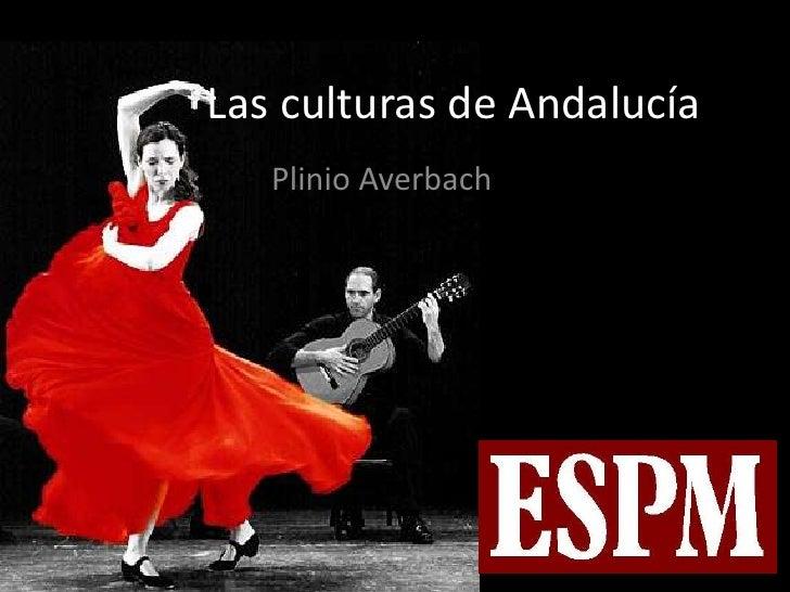 Las culturas de Andalucía<br />PlinioAverbach<br />