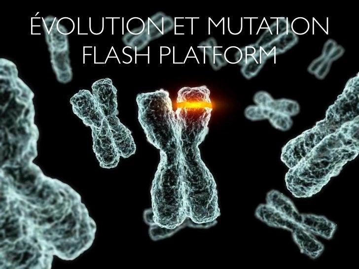 ÉVOLUTION ET MUTATION   FLASH PLATFORM