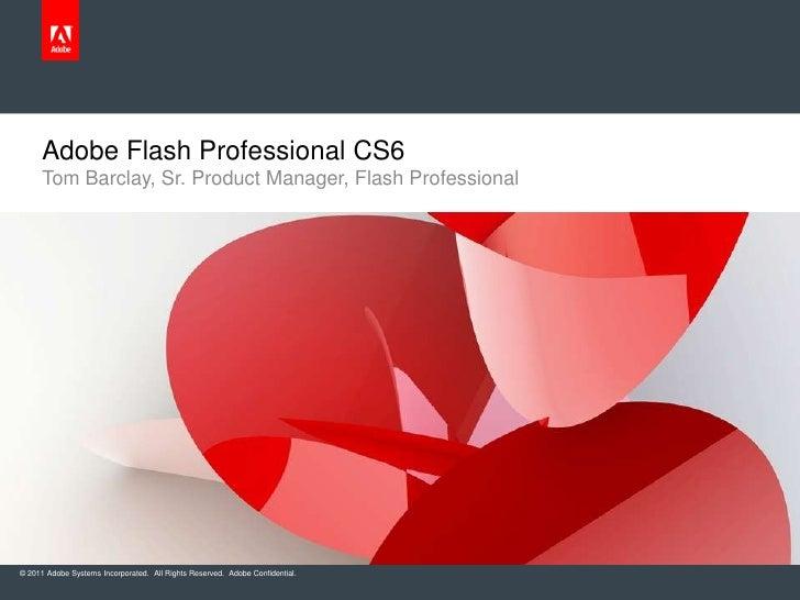 Adobe Flash Pro CS6 Customer Review