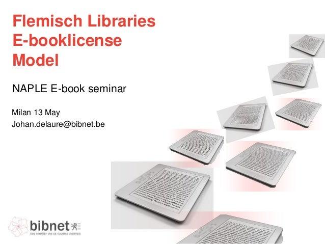 Flemisch ebooksinlibraries v20130513