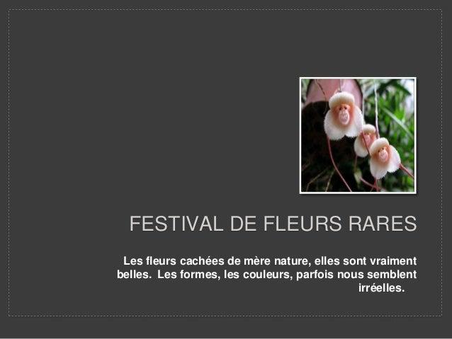 FESTIVAL DE FLEURS RARES  Les fleurs cachées de mère nature, elles sont vraiment  belles. Les formes, les couleurs, parfoi...