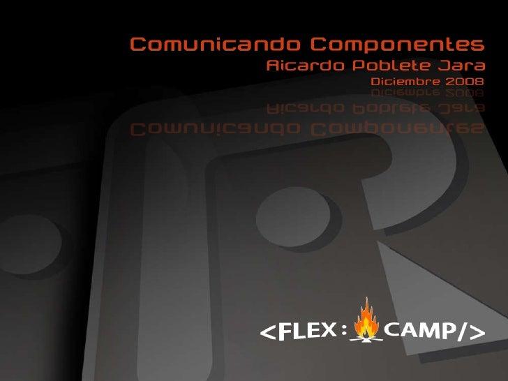 Flex Camp 2008. Ricardo Poblete