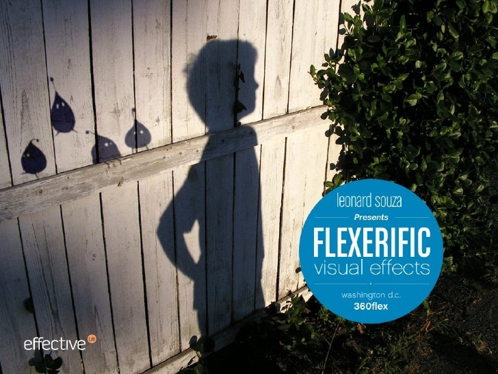 Flexerific Visual Effects