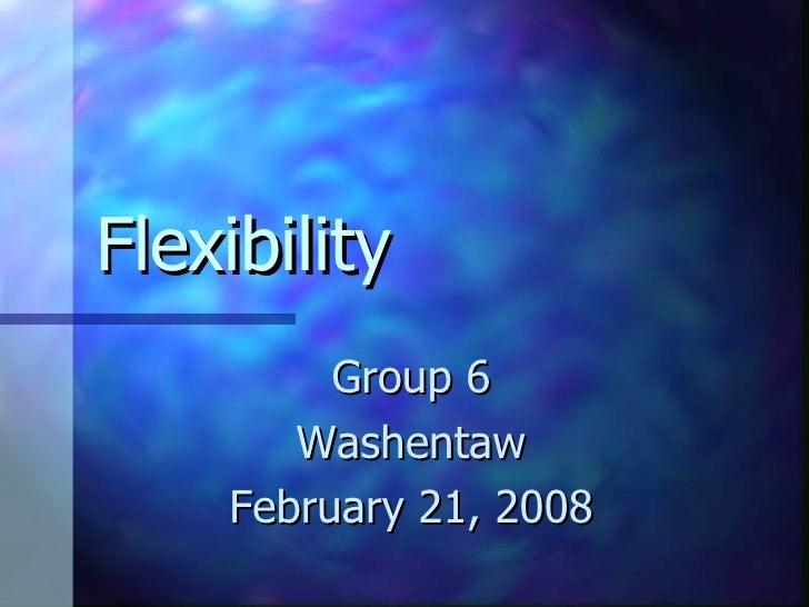 Flexibility Group 6 Washentaw February 21, 2008