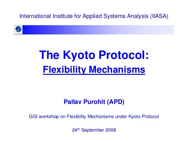 Flexibility Instruments of the Kyoto Protocol