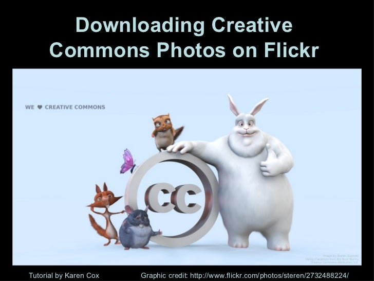 Flickr 1219100716529965 9