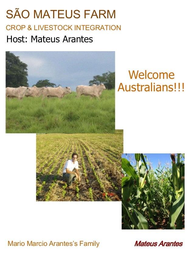 SÃO MATEUS FARM CROP & LIVESTOCK INTEGRATION  Host: Mateus Arantes  Welcome Australians!!!  Mario Marcio Arantes's Family ...