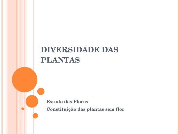DIVERSIDADE DAS PLANTAS Estudo das Flores Constituição das plantas sem flor