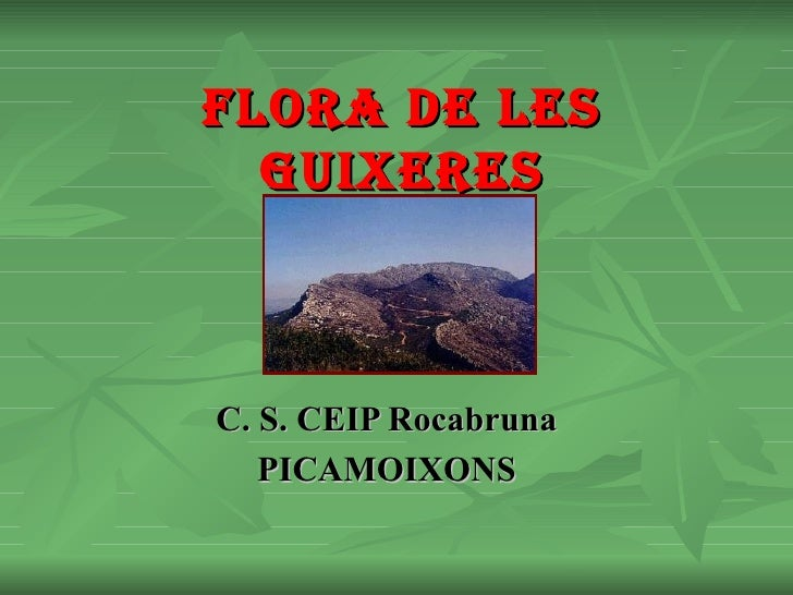 Flora I Fauna De Les Guixeres