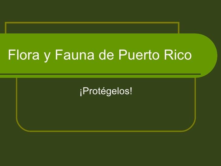 Flora y Fauna de Puerto Rico ¡Protégelos!
