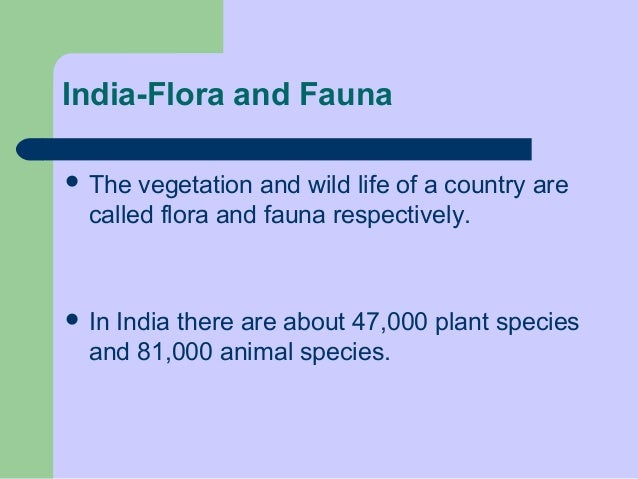 India-Flora and Fauna  The  vegetation and wild life of a country are called flora and fauna respectively.   In  India t...