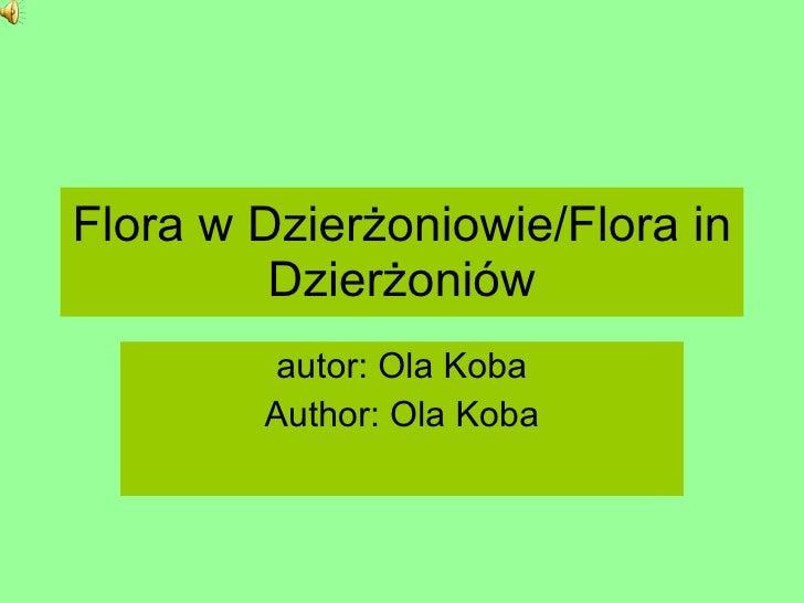 Flora of Dierżoniów