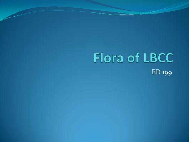 Flora of LBCC<br />ED 199<br />