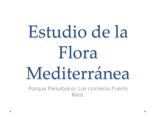 Flora parque periurbano de las canteras puerto real - Las canteras puerto real ...