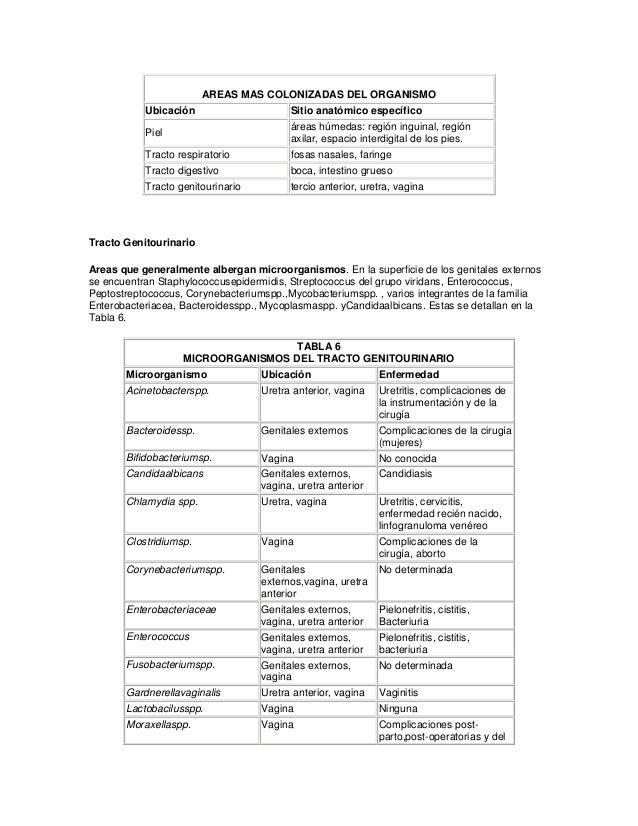 AREAS MAS COLONIZADAS DEL ORGANISMO Ubicación Sitio anatómico específico Piel áreas húmedas: región inguinal, región axila...