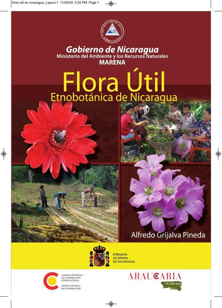 Flora util de nicaragua