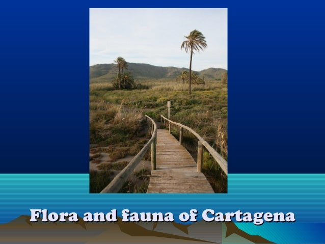Flora and fauna of CartagenaFlora and fauna of Cartagena