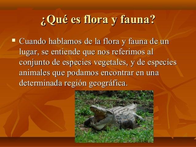 Flora y fauna for Que es exterior y interior