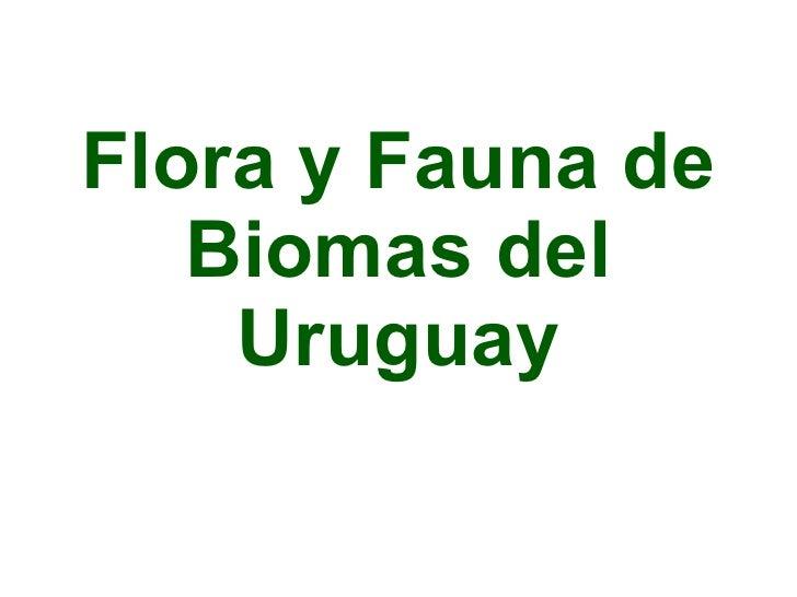 Flora y Fauna de Biomas del Uruguay