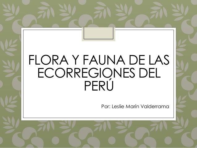 FLORA Y FAUNA DE LAS ECORREGIONES DEL PERÚ Por: Leslie Marín Valderrama