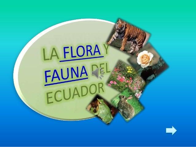LA FLORA1.- La importancia de la flora en elEcuador.2.- Las plantas3.- La fotosíntesis4.- Especies locales mas importantes