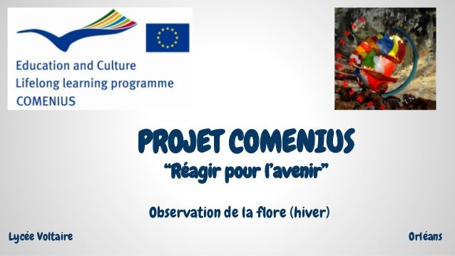 """PROJET COMENIUS """"Réagir pour l'avenir"""" Lycée Voltaire Orléans Observation de la flore (hiver)"""