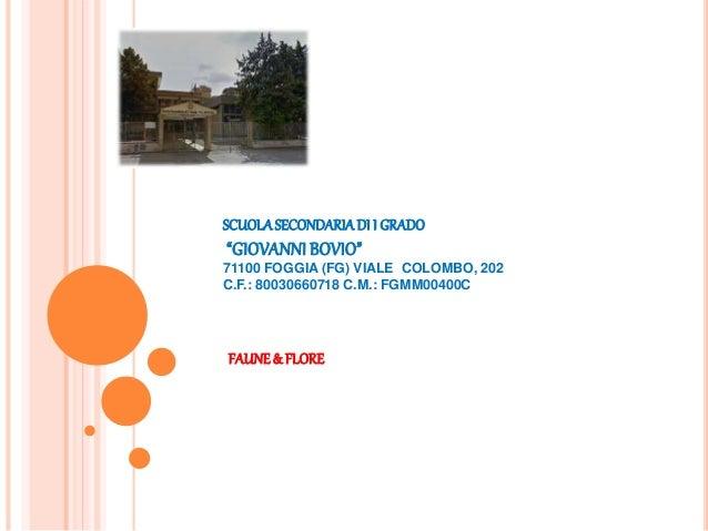 """SCUOLA SECONDARIA DI I GRADO  """"GIOVANNI BOVIO""""  71100 FOGGIA (FG) VIALE COLOMBO, 202  C.F.: 80030660718 C.M.: FGMM00400C  ..."""