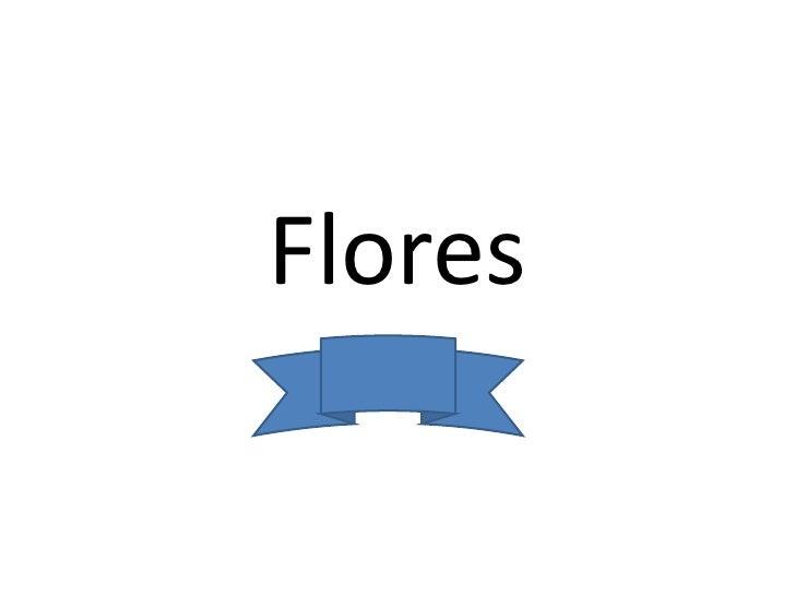 Flores<br />