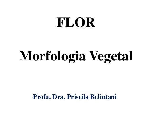 FLOR Morfologia Vegetal Profa. Dra. Priscila Belintani