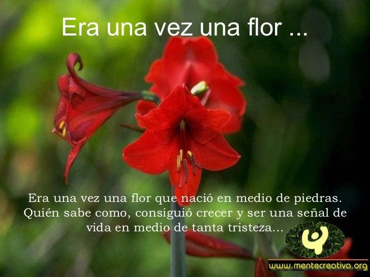 Era una vez una flor ... Era una vez una flor que nació en medio de piedras. Quién sabe como, consiguió crecer y ser una s...